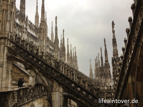 Mailan_Dom_lifeaintoverde (2)